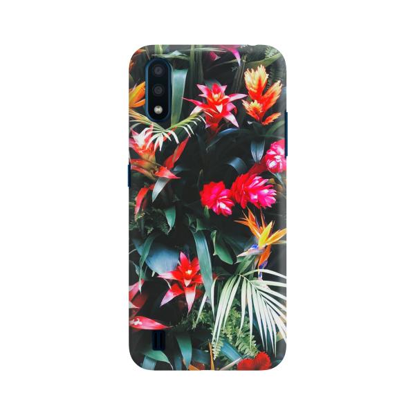 Palma Colorful